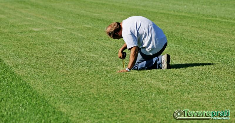 Consulenza tecnica per l'installazione di tappeti erbosi in zolla - Roma
