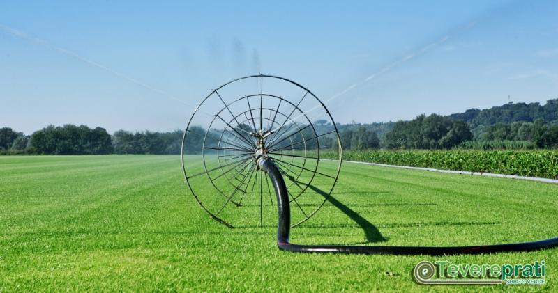 Piano di manutenzione: irrigazione del prato