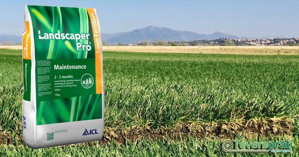 Landscaper Maintenance - Fertilizzante per la crescita del prato