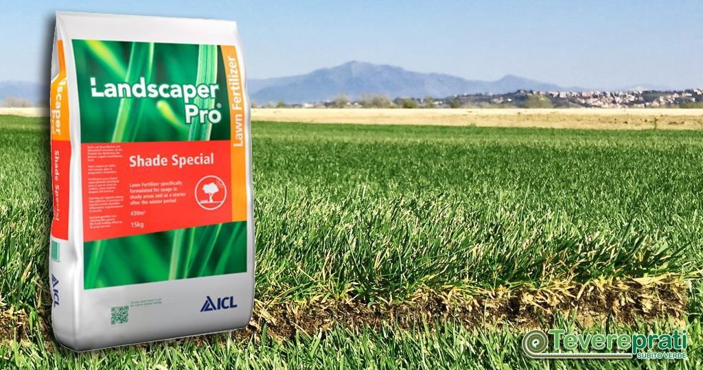 Tevereprati è fornitore di fertilizzante ad alto contenuto di Ferro per lotta al muschio nei prati e un veloce rinverdimento